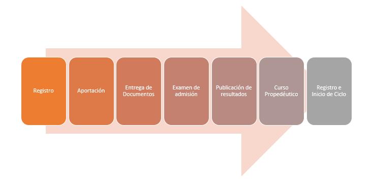 proceso de convocatoria del ipn en línea 2017-1
